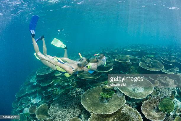 Two Women snorkel over Reef Ellaidhoo House Reef North Ari Atoll Maldives