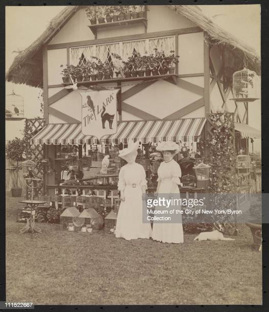Two women standing in front of a booth full of birds in cages, Southampton, New York, mid 1900s.