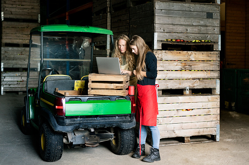 Two women using laptop between crates on a farm - gettyimageskorea