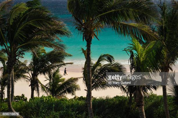 Two Women Walking Among Palm Trees, Harbour Island, Bahamas