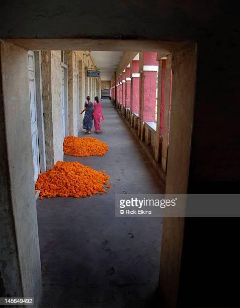 Two women walking by piles of flowers