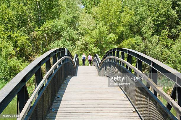 two women walking on a bridge to the forest - レリダ県 ストックフォトと画像