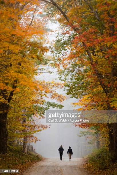 two women walking on dirt road between trees in autumn, plymouth, vermont, usa - plymouth massachusetts stock photos and pictures