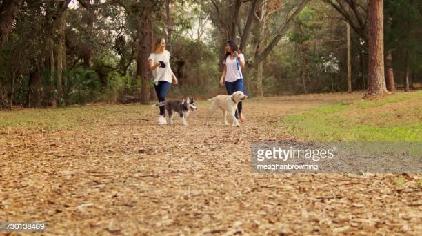Two women walking their dogs, Saint Petersburg, Florida, America, USA