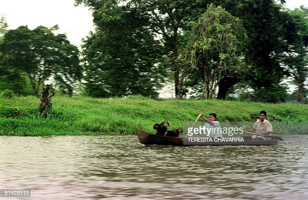 Two women with their dogs paddle in a canoe on the San Juan river in Nicaragua 09 November 2001 The river basin of the San Juan borders Costa Rica...