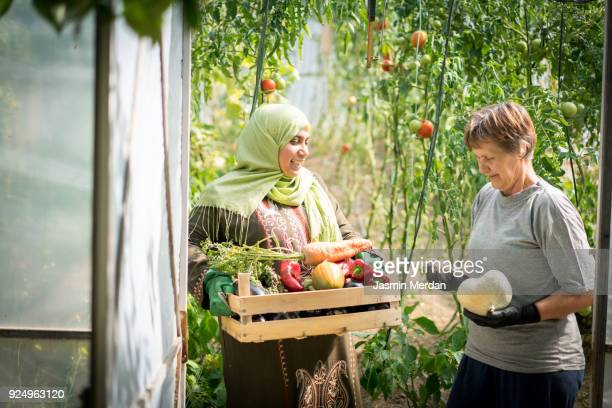 two women working in garden - different cultures stock pictures, royalty-free photos & images