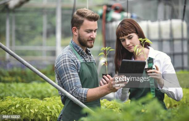 Two Workers at a Garden Center Discussing, using Digital Tablet