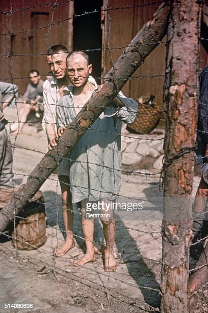 Two World War II prisoners of war stare through a barbed wire fence at Buchenwald Concentration Camp near Weimar Germany in 1945