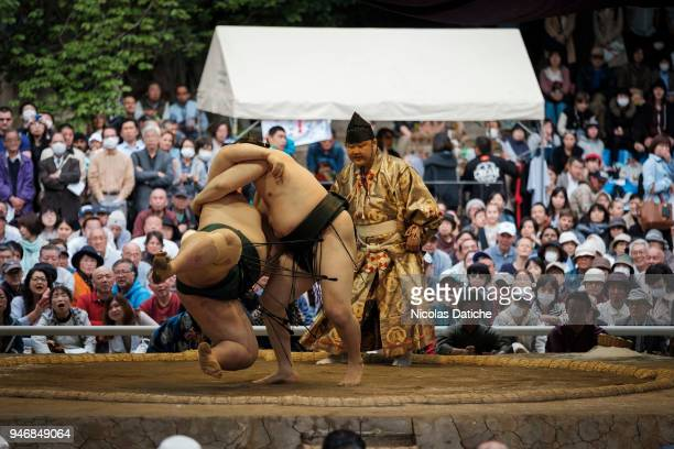 Two wrestlers fight durin 'Honozumo' ceremonial on April 16, 2018 in Tokyo, Japan. This annual offering of a Sumo Tournament to the divine at the...