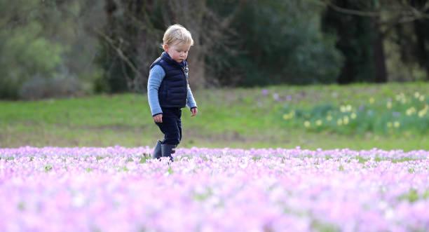 GBR: Spring At Kew Gardens, London