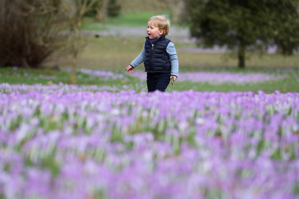 GBR: Spring At The Royal Botanic Gardens Kew