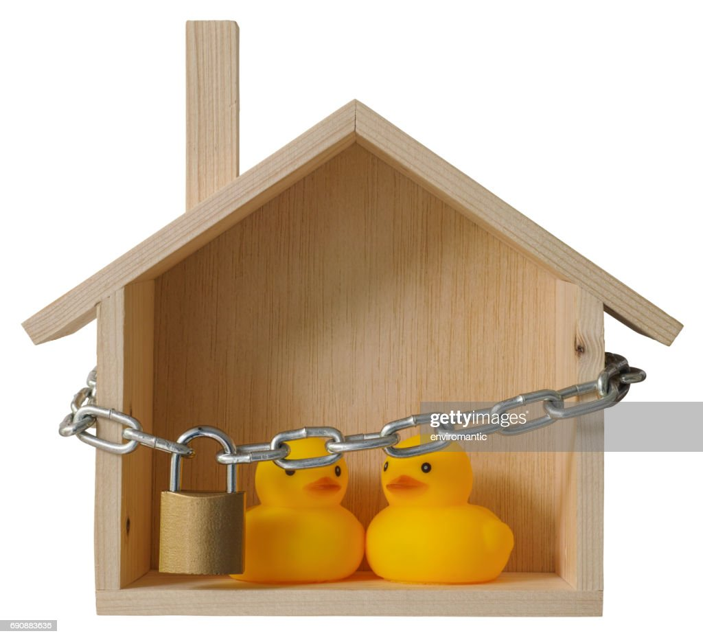 Two Yellow Rubber Ducks Inside A Conceptual Wooden House With A ...