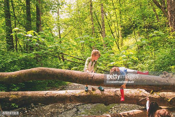 Two young boys climbing over trees by a creek