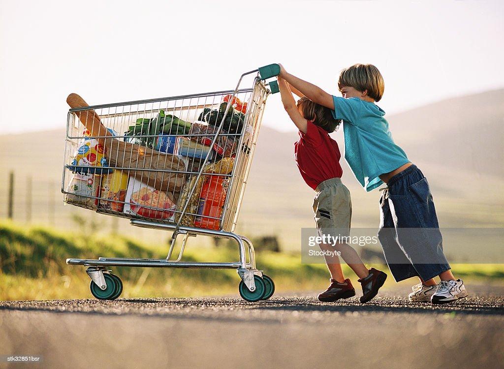 two young children pushing a shopping cart with groceries : Foto de stock
