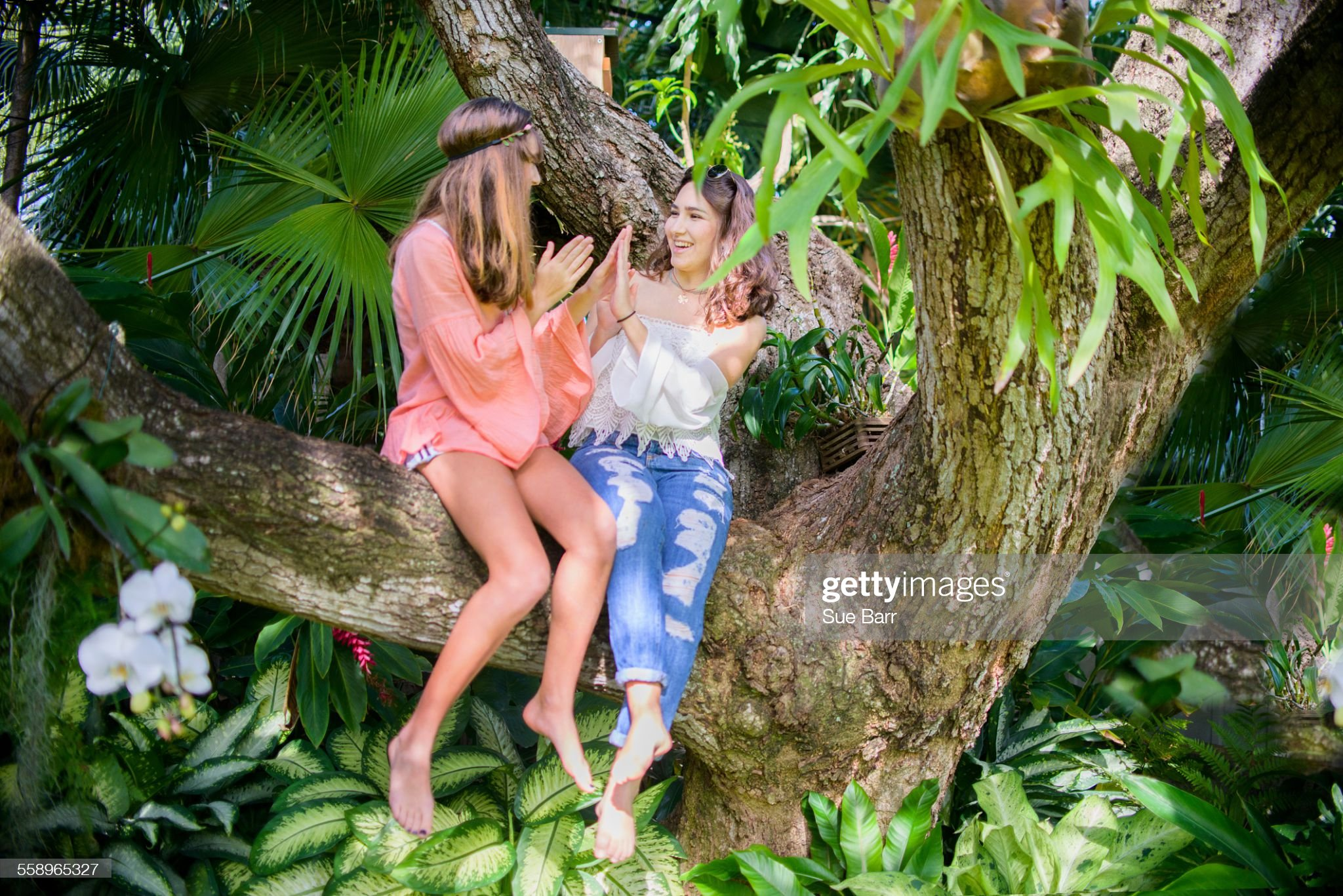 https://media.gettyimages.com/photos/two-young-female-friends-playing-clapping-game-in-tree-picture-id558965327?s=2048x2048
