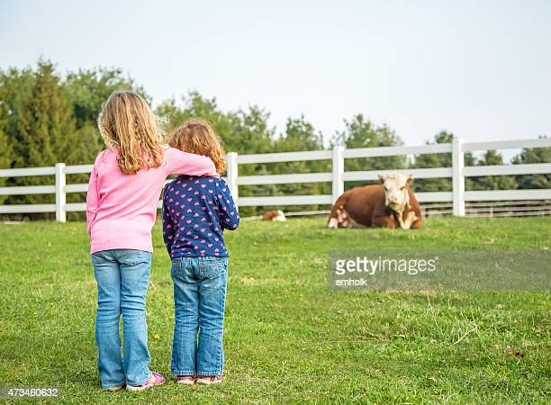 Two Young Girls Checking on Cows & Calves in Pasture