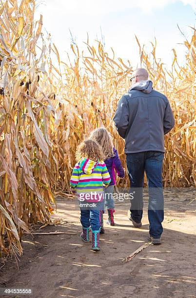 Two Young Girls & Dad Walking In Autumn Corn Maze