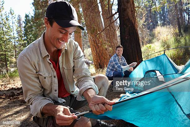 Two young male campers putting up tent in forest, Los Angeles, California, USA