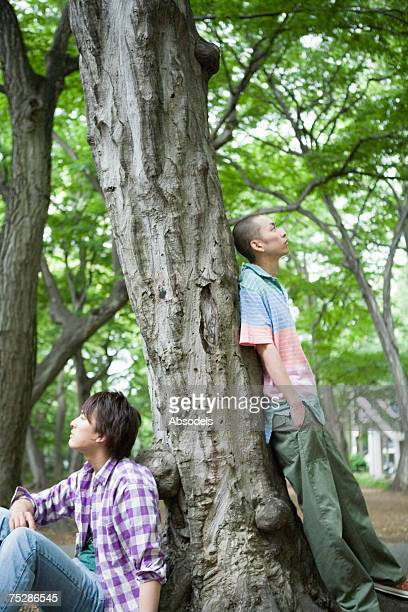 two young men leaning against a tree - 遅い ストックフォトと画像