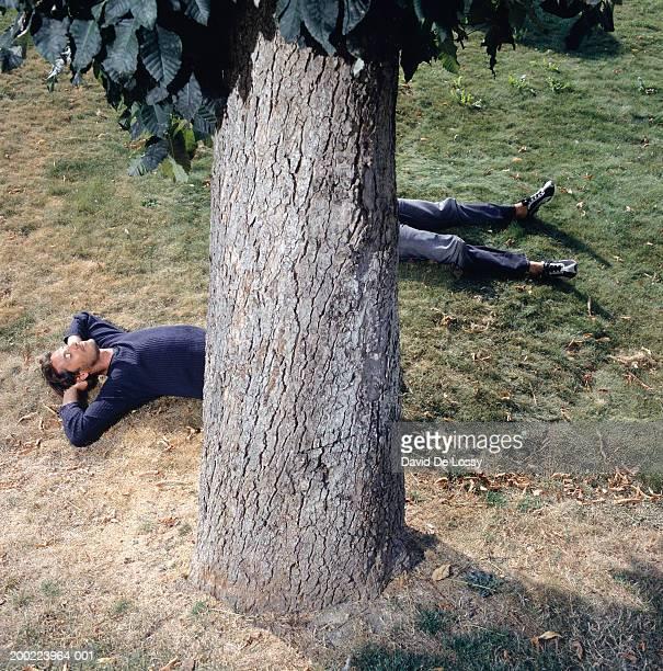 two young men lying behind tree, elevated view - only men stockfoto's en -beelden