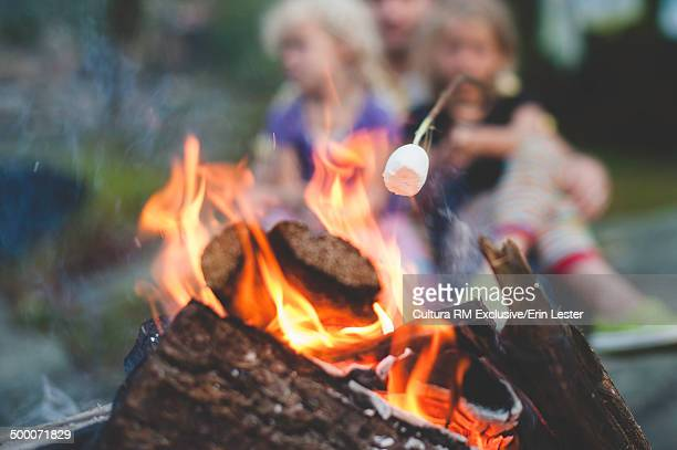 Two young sisters toasting marshmallows on campfire
