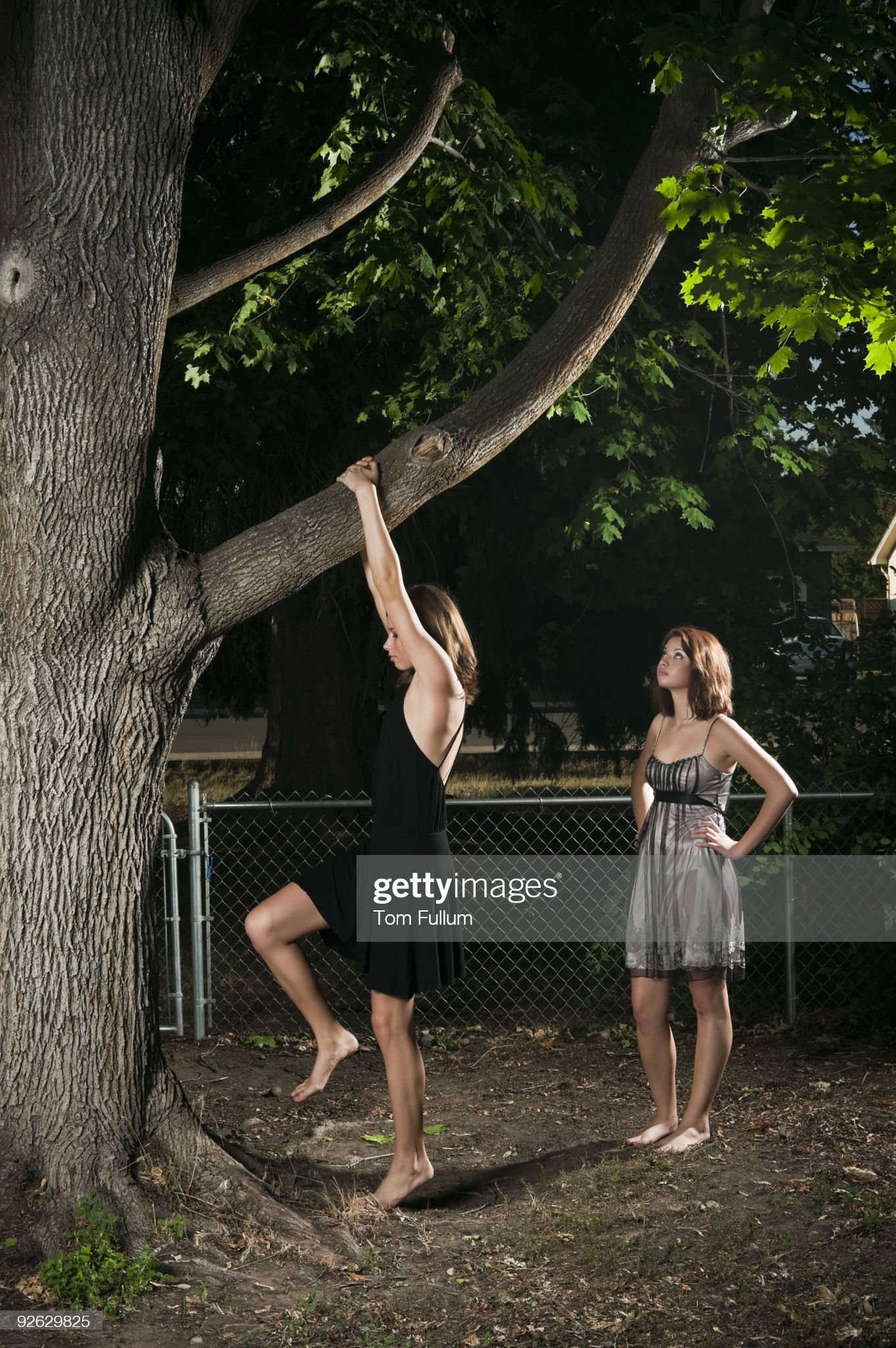 https://media.gettyimages.com/photos/two-young-woman-climbing-tree-picture-id92629825?s=2048x2048