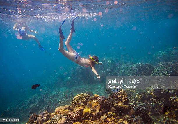 Two Young Woman Snorkeling in Ocean.