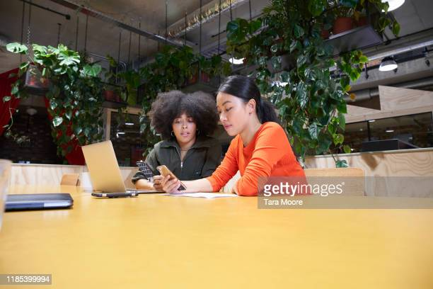 two young women looking at laptop in open plan office - using computer stock pictures, royalty-free photos & images