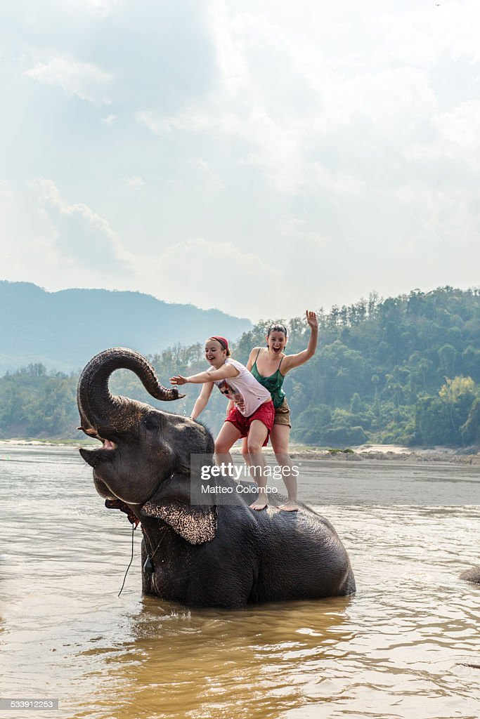 Two young women riding an elephant in the Mekong : Stock Photo