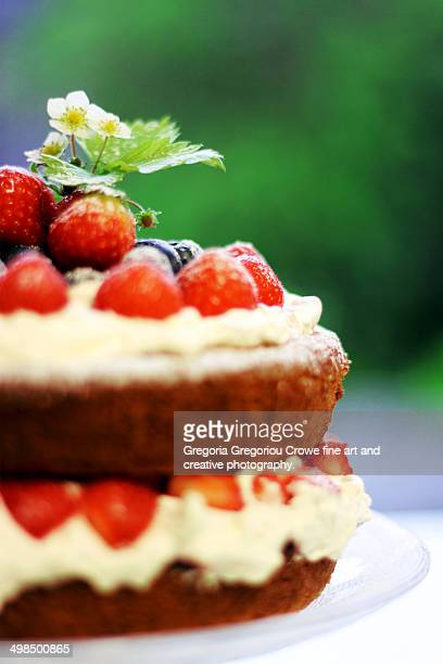 two-layer sponge cake - gregoria gregoriou crowe fine art and creative photography fotografías e imágenes de stock