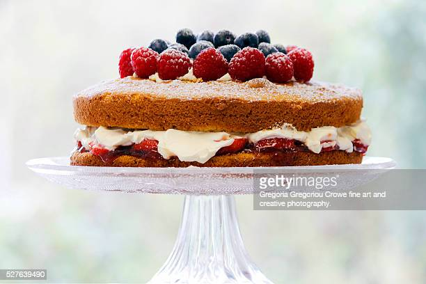 two-layer sponge cake - sponge cake stock pictures, royalty-free photos & images