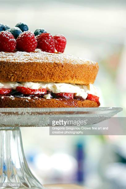 two-layer sponge cake - gregoria gregoriou crowe fine art and creative photography stock photos and pictures