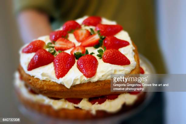 two-layer sponge cake - victoria sponge cake - sponge cake stock pictures, royalty-free photos & images