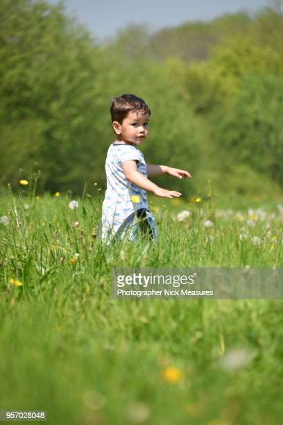 Two-year-old little boy walking through Meadows in the Cotswold.