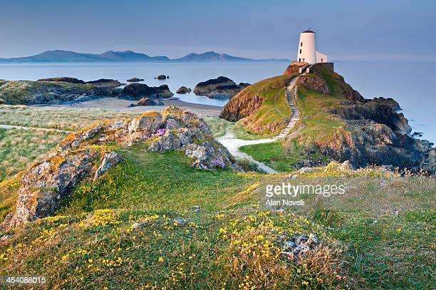 twr mawr lighthouse on  llanddwyn island - coastline stock photos and pictures