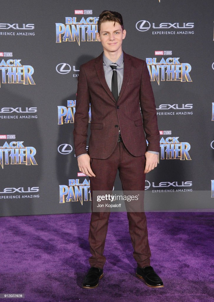 Ty Simpkins attends the Los Angeles Premiere 'Black Panther' at Dolby Theatre on January 29, 2018 in Hollywood, California.