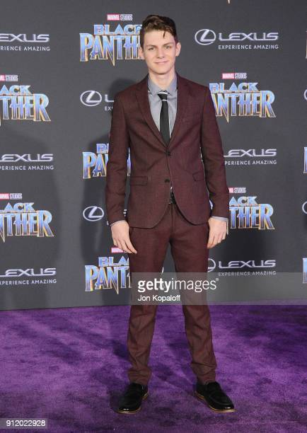 Ty Simpkins attends the Los Angeles Premiere 'Black Panther' at Dolby Theatre on January 29 2018 in Hollywood California