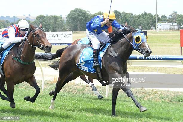 Tycoon ridden by Robert Beattie wins Bill McGrath Engineering FM Maiden Plate at Wodonga Racecourse on December 26 2016 in Wodonga Australia