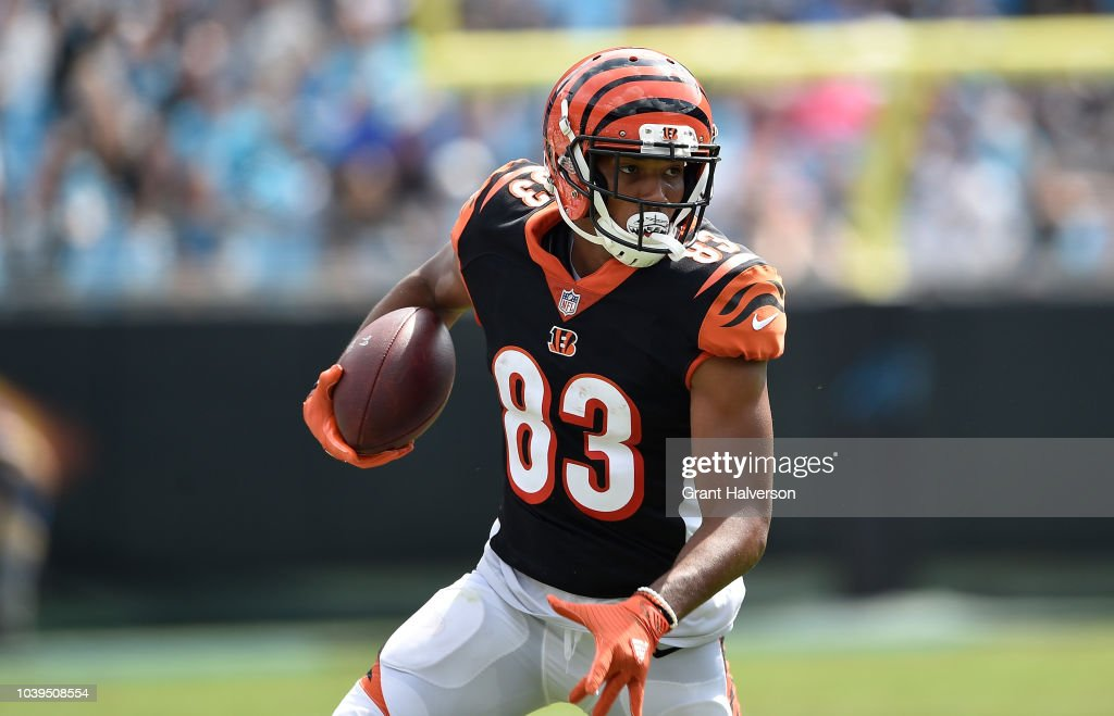 Cincinnati Bengals v Carolina Panthers : News Photo