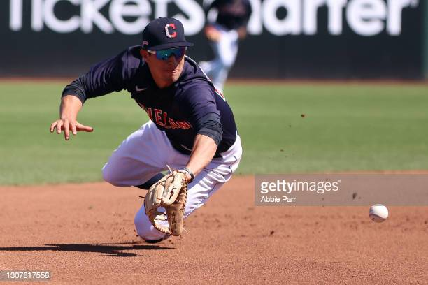 Tyler Freeman of the Cleveland Indians dives to record an out in the fourth inning against the Chicago Cubs during their MLB spring training baseball...