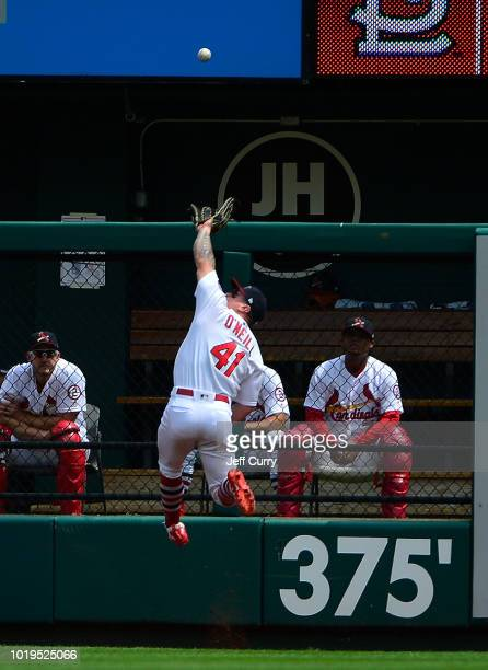 Tyler O'Neill of the St Louis Cardinals leaps to make the catch at the wall during the second inning against the Milwaukee Brewers at Busch Stadium...