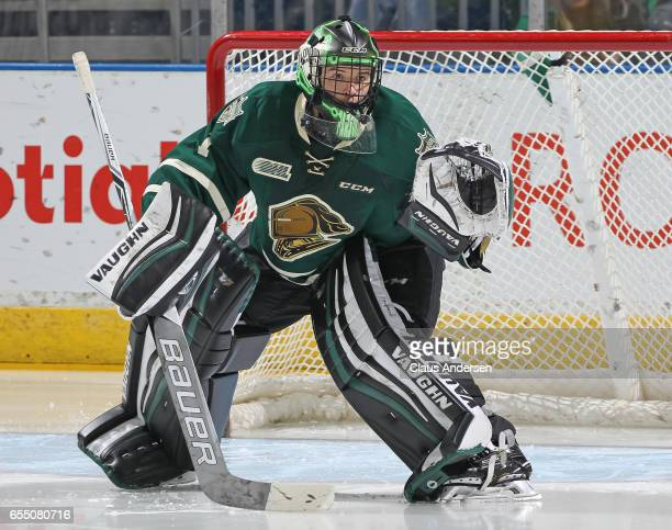 Tyler Parsons of the London Knights gets set to face a shot against the Flint Firebirds during an OHL game at Budweiser Gardens on March 17 2017 in...