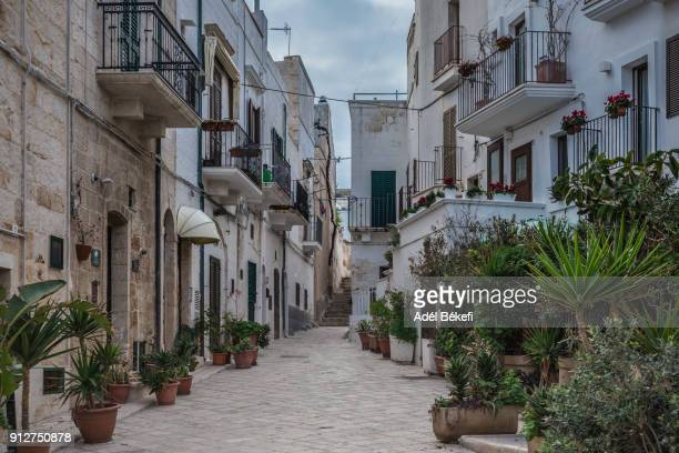Typical alley and houses of the old town, Polignano a Mare, Province of Bari, Apulia, Italy, Europe