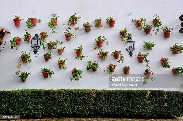 typical andalucian patio in cordoba - スペイン コルドバ市 ストックフォトと画像