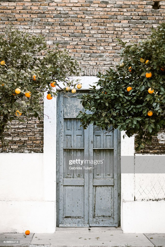 Typical argentinian facades : Stock Photo