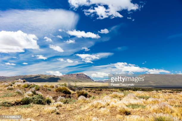 typical argentinian patagonia landscape - barren land with limited vegetation, patagonia, argentina, january 14, 2018 - pampa stock-fotos und bilder