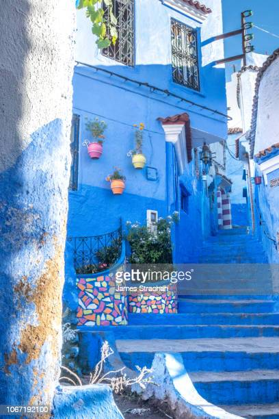 typical blue painted stairs and alleyway with colour flowerpots on the wall in chefchaouen, known as the blue city, set in the rif mountains, morocco - chefchaouen photos et images de collection