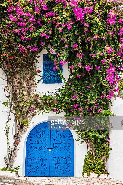 A typical blue studded wooden door with bougainvillea growing up the whitewashed wall and wrought iron window dressing in Sidi Bou Said in Tunisia
