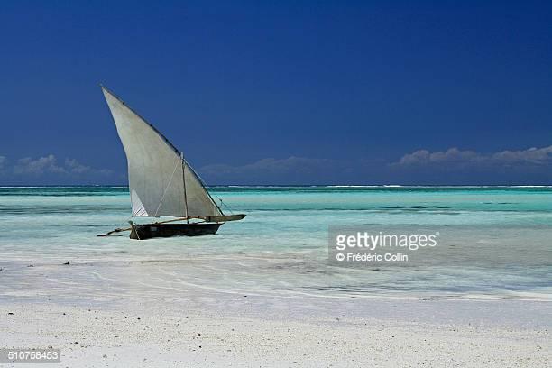 typical boat (dhow) on the beach in zanzibar - paesaggio marino foto e immagini stock