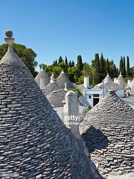 Typical constructions called Trulli